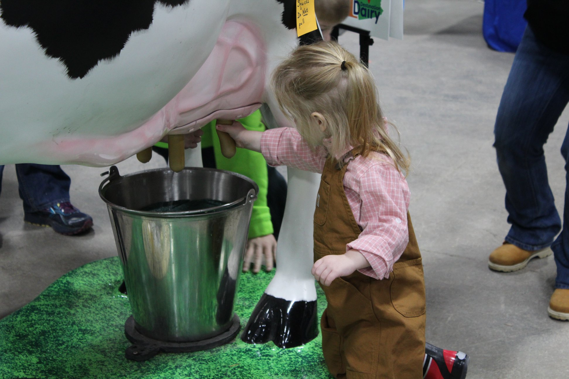 A young girl milking a fake cow at the 2020 Pennsylvania Farm Show.