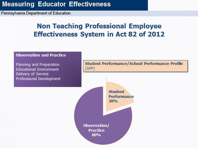 Non Teaching Professional Employee Effectiveness System in Act 82 of 2012